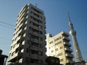 コスモ錦糸町