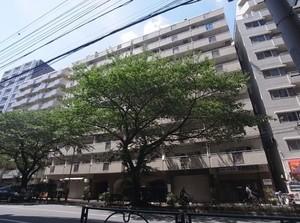 第5桜台ファミリーマンション