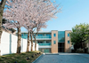 ディアナコート八雲桜樹
