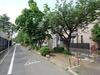 ディアナコート柿の木坂