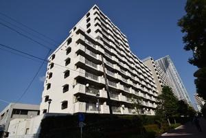 東卸豊海住宅3号棟